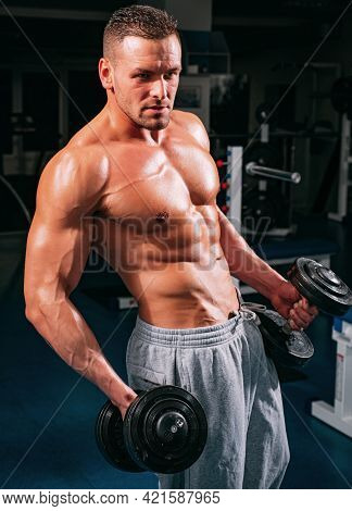 Sportsman In Gym. Sporty Exercises. Dumbbells Workouts. Male Torso With Six Packs. Man Naked Body.