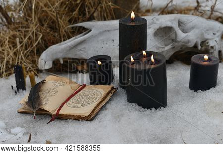 Horse Skull, Old Witch Book Of Spells, Black Candles Outside In Winter, Magic Ritual. Esoteric, Goth