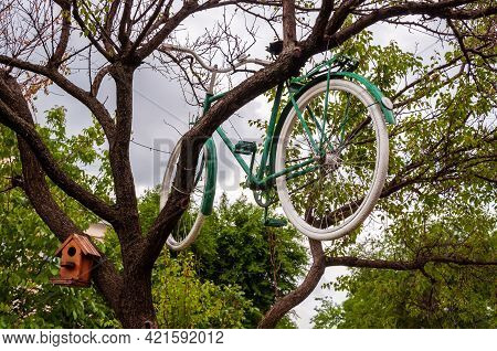 Bicycle Hanging On The Tree. Ecological Transport. Bicycle Repair Shop Ad. Repairing Bicycle Outdoor
