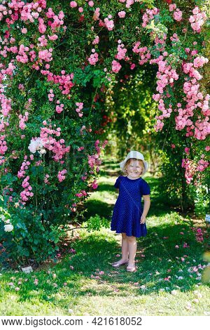 Portrait Of Little Toddler Girl In Blossoming Rose Garden. Cute Beautiful Lovely Child Having Fun Wi
