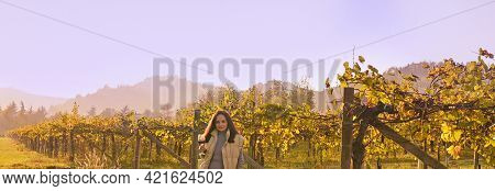 Young Woman With A Glass Of White Wine In The Vineyards Of Italy. Free Space For Text. Golden Autumn