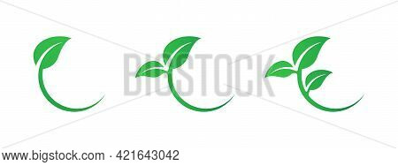 Green Leaves Icon Set. Eco Leaves Collection. Ecological Concept. Branch With Leaves Set. Flat Banne