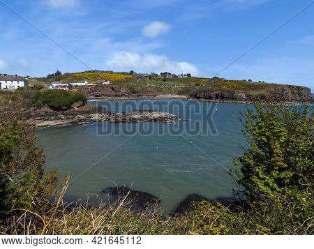 Picturesque,colorful Cove On An Irish Shore On County Waterford.