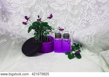 A Small Elegant Flower With A Root And A Clod Of Earth Stands In A Jar For Cream Next To The Bubbles