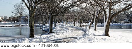 A Snow Covered Tree Lined Walking Path Is Shoveled Tow Walk Between The Two Lakes At Argyle Park In