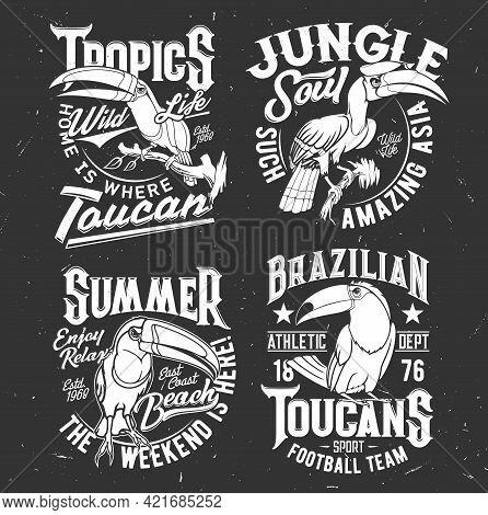 Toucan Bird T-shirt Retro Print Template. Football Sport Team, Tropical Wildlife And Summer Leisure