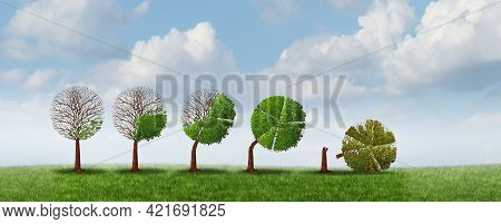 Business Growth Risk And Financial Strain Problems With A Fast Growing Economic Cycle As A Tree Shap