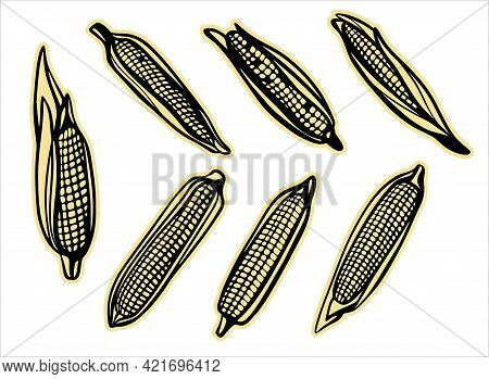 A Set Of Stickers, Autumn Corn Harvest, Different Types. Design For Plotter Cutting.