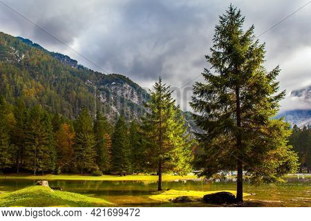 Alps. Lake Fuzine. Yellow trees are reflected in the green smooth water of the lake. Border between Northern Italy and Slovenia.