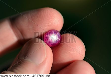 Natural 6 Rays Star Loose Red Ruby Oval Cabochon Gemstone Holded In Hand Fingers On Bright Sunny Day