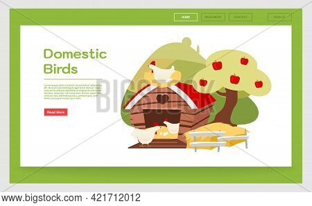 Domestic Birds Landing Page Template. Poultry Farming Website Interface Idea With Flat Illustrations