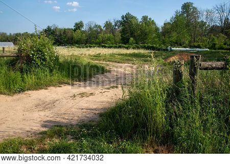 Beautiful Journey Oncept Image Of A Soft Dirt Hiking Path Through A Country Farm Garden. Winding Roa