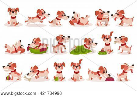 Funny Jack Russell Terrier Character Running, Rolling And Gnawing Bone Vector Set