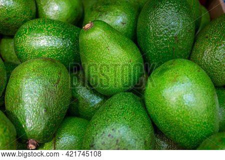 Green Avocado. Avocado On The Counter Of The Store.
