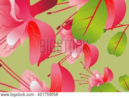 Background Of Flowers, Fuchsia. Fuchsia Pink. The Background Is Summer. Plants And Heat.