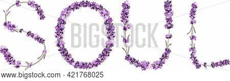 Vector Inscription Soul Made In The Form Of Lavender Sprigs In Bright Colors On A White Background