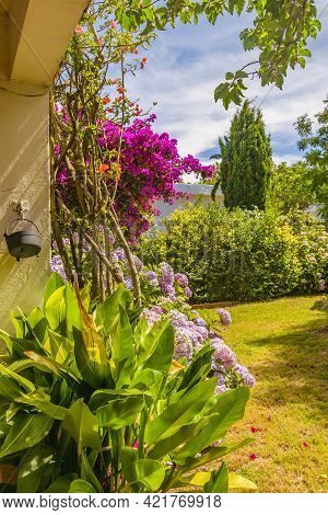 Home Garden Yard Exterior