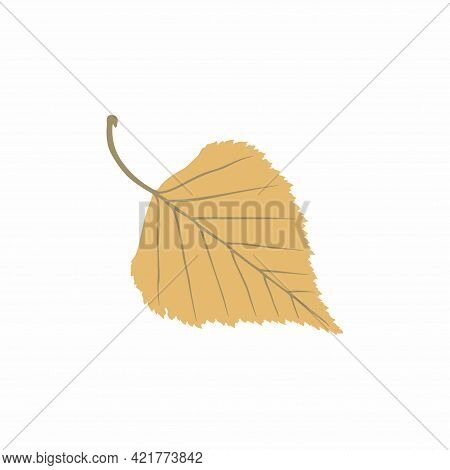 Graceful Ochre Leaves. Flat Twig. Vector Isolated Element. Garden Plant. Icon. Summer Or Spring Desi