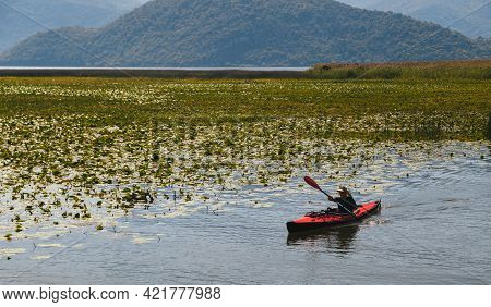 Montenegro, National Park Skadar Lake - September, 21 2018: A Small Red Kayak With A Tourist In The