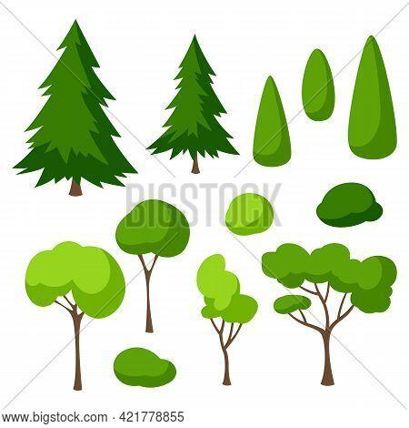 Set Of Trees, Spruces And Bushes. Summer Or Spring Landscape.