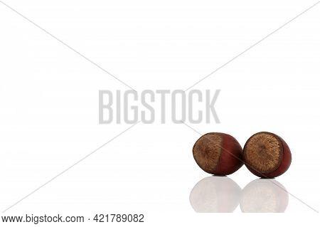 Hazelnuts Isolated On White Background, Hazelnuts Close Up