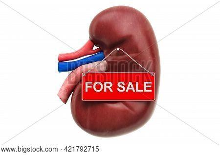Kidney Transplant Or Renal Transplant Concept. Kidney With For Sale Hanging Sign, 3d Rendering Isola
