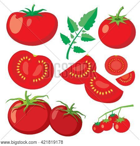 Vector Fresh Tomatoes In Flat Style. Healthy Vegetable Food, Organic Ripe Fresh Natural Illustration