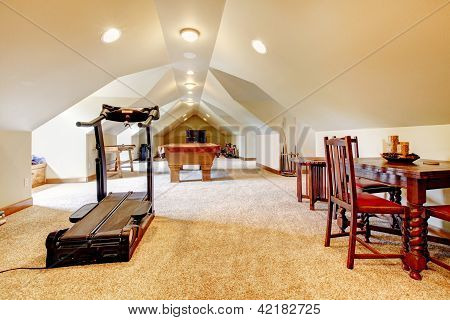 Large Long Attic Game Room With Tv, Pool And Sport Equipment.