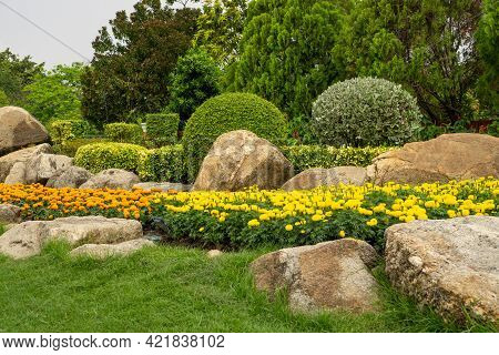 Topiary Garden Landscaped Design With Hedge Round Shape Of Bush, Decorated With Green Wall Plant, Wh