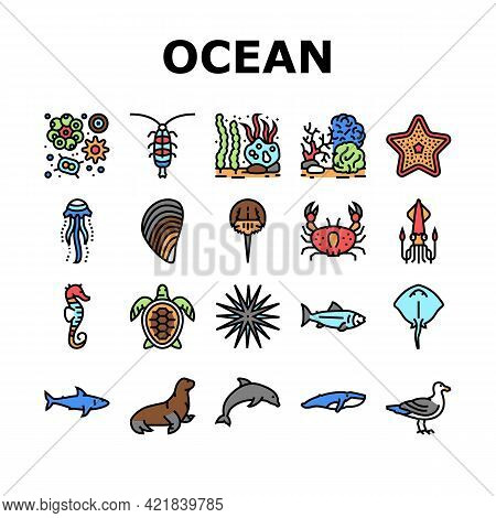 Ocean Underwater Life Collection Icons Set Vector. Ocean Fish And Star, Jellyfish And Turtle, Crab A