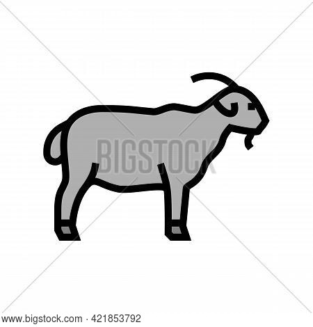 Goat Domestic Animal Color Icon Vector. Goat Domestic Animal Sign. Isolated Symbol Illustration