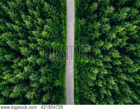 Aerial Top View Of Road In Green Fir Woods. Green Forest With Country Road In Summer Finland.