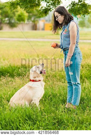 Female Hand Holding Puppy's Paw On Summer Background. Dogs And Woman Friendship. Obedient Golden Ret