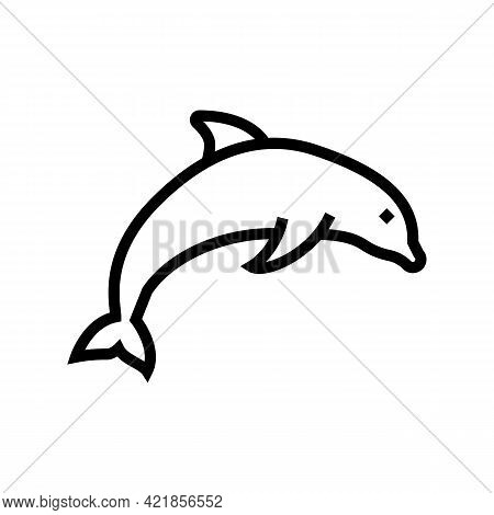 Dolphin Ocean Line Icon Vector. Dolphin Ocean Sign. Isolated Contour Symbol Black Illustration