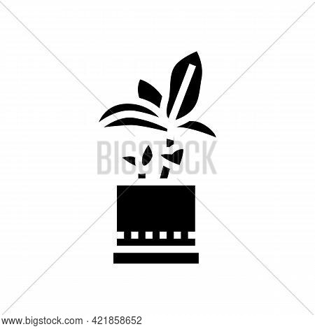 Green Leaves Houseplant In Pot Glyph Icon Vector. Green Leaves Houseplant In Pot Sign. Isolated Cont