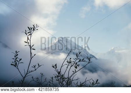 Wonderful View Through Silhouettes Of Branches With Autumn Leaves To Snowy Mountain Above Thick Clou