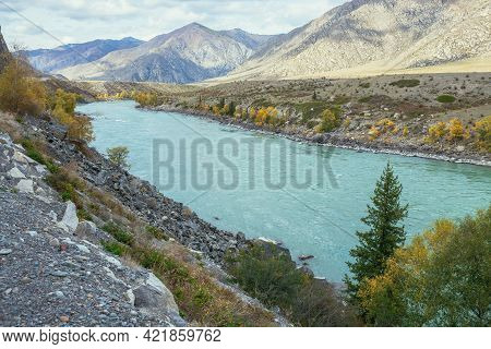 Colorful Autumn Landscape With Golden Leaves On Trees Along Wide Turquoise Mountain River In Sunshin