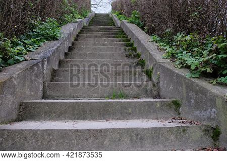 Old Mossy Concrete Steps Leading Up. Ladder Up.