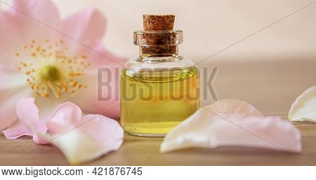 Rosehip Extract In Bottles. Homeopathy. Selective Focus.