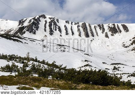 Spring Mountains Covered With Snow. Chornohora Mountain Range In The Carpathians, Hoverla, Shpytzi,