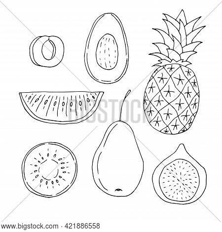 Set Of Fruits Apricot Avocado Pineapple Watermelon Kiwi Pear, Fig Vector Illustration Hand Drawn Doo