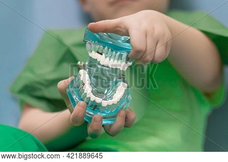 Soft Focus, Selective Focus Child Hands Hold Glass Jaw With Aching White Teeth With Caries And Pulpi