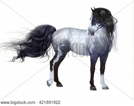 Blue Roan Horse 3d Illustration - The Blue Roan Is A Coat Color Of Many Different Breeds Of Horses A