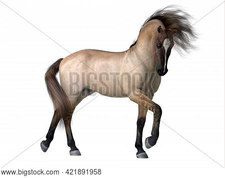 Grulla Dun Horse 3d Illustration - The Grulla Dun Is A Coat Color Of Many Different Breeds Of Horses