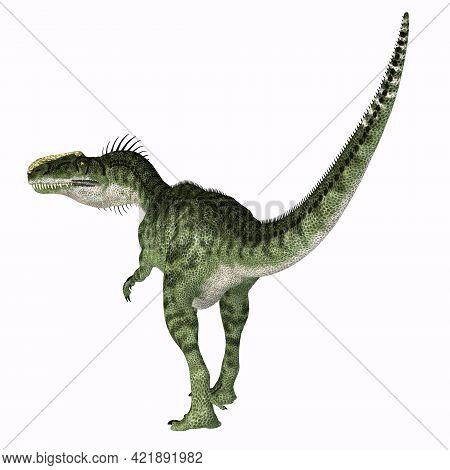 Monolophosaurus Dinosaur Tail 3d Illustration - Monolophosaurus Was A Carnivorous Theropod Dinosaur
