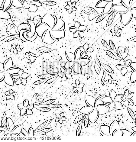 Seamless Pattern. A Buds Of Blooming Plumeria Flowers On A Branch And Separately. Isolated Line Art,