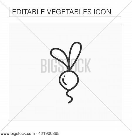 Beetroots Line Icon. Root Vegetable. Edible Plant. Vegetarian, Healthy Nutrition. Health Benefits. A