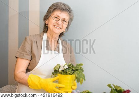 Portrait Of A Happy Senior Woman In Glasses And A White Apron Caring For Flowers At Home. Smiling Fl