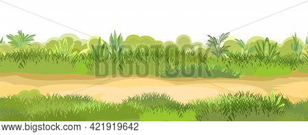 Rural Road To Green Glade. Summer Meadow. Trail. Juicy Grass Close Up. Grassland. Country Trip. Isol