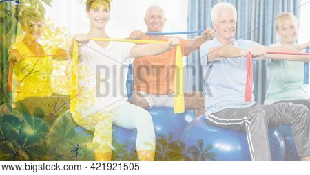 Composition of female instructor senior man and women exercising with rubber bands with tree overlay. retirement, fitness and active lifestyle concept digitally generated image.